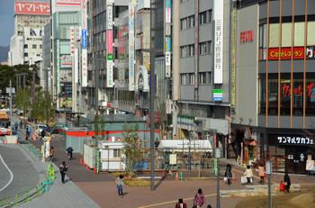 Himeji150113