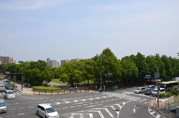 Osakananiwanomiya15021