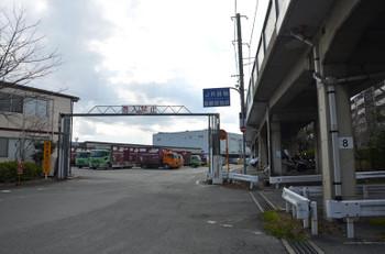 Kyotojr15038
