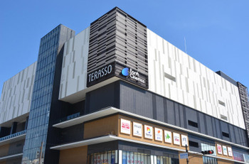 Himejiterasso150755