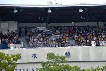 Kyototeppaku130822