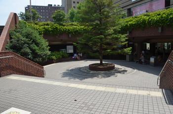 Kyotojr150829