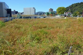 Hiroshimafutabanosato151035