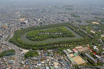 Sakainakamozu15111