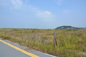 Fukuokaislandcity151121
