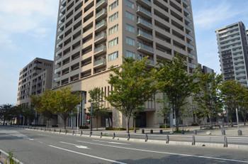Fukuokachihaya151119