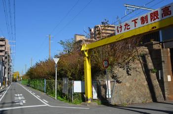 Osakanoe151226