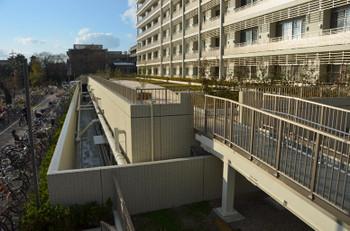 Kyotouniversity151256