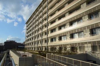 Kyotouniversity151257