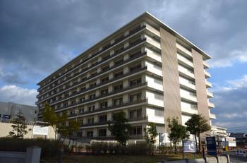 Kyotouniversity151260