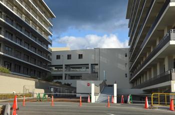 Kyotouniversity151261
