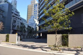 Osakanakatsu150324