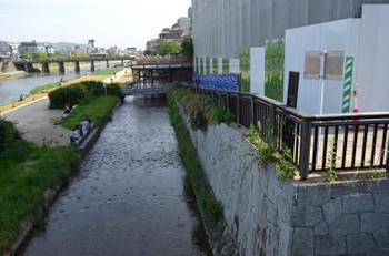 Kyotosolaria16056