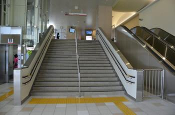 Nankaihagoromo1606554