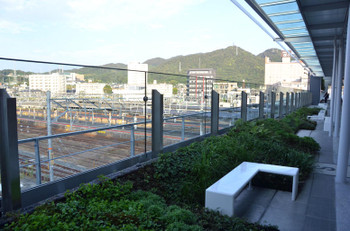 Yamaguchijr160616