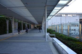 Yamaguchijr160620