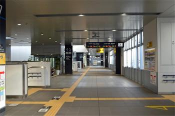Yamaguchijr160659