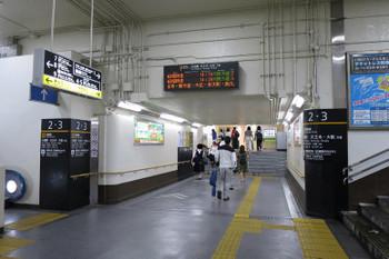 Wakayama160671