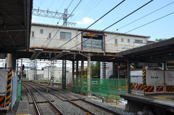 Kyotofukakusa161021