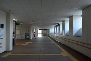 Kyotofukakusa161061