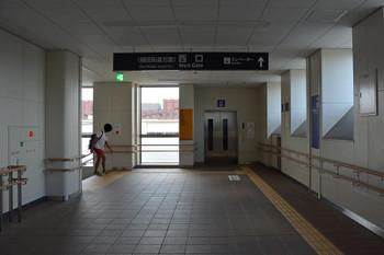 Kyotofukakusa161063