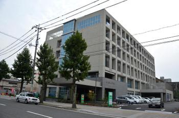 Hiroshimahitoto161115