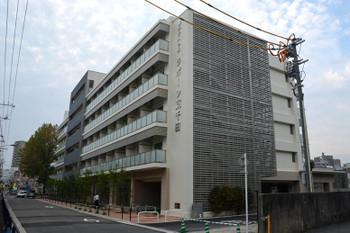 Hiroshimahitoto161117