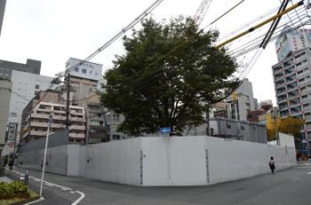 Osakanakatsu161117