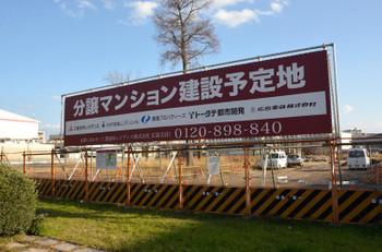 Hiroshimahitoto170113