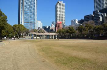 Kobeshiba170111