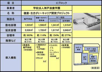 Himejicasty170232