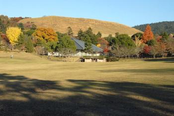 Nara17036