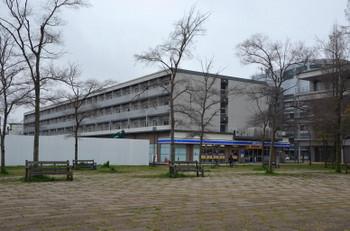 Hiroshimahitoto170420
