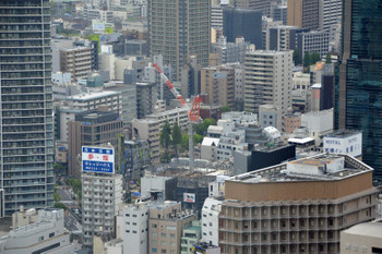 Osakanakatsu170411