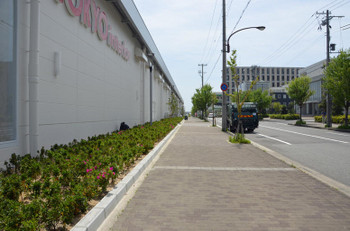 Kobeportisland170521