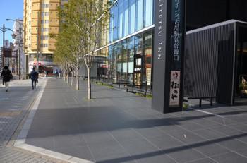 Nagoyayozemi170518
