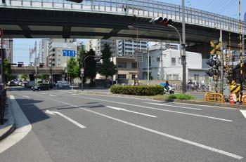 Osakananiwa170567