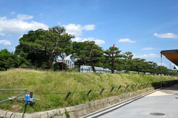 Osakaosakajo170616