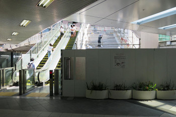 Osakaumeda17091323
