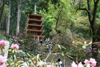 Nara180112
