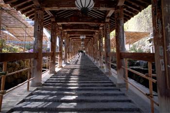 Nara180113