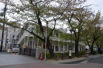 Kyotohulic180413
