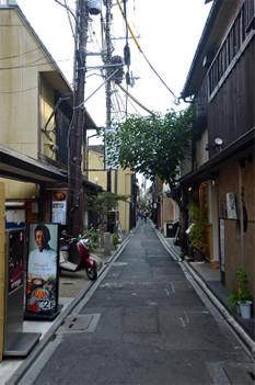 Kyotoponnto180911