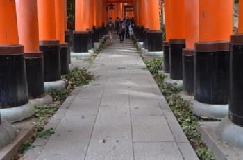 Kyotoinari180921