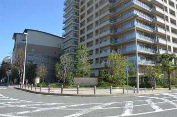 Kobehat181033