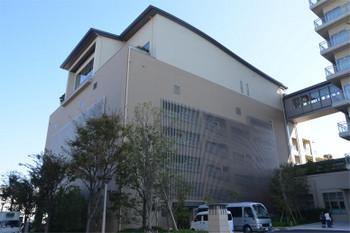 Kobehat181035
