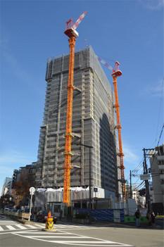 Osakanakatsu181212
