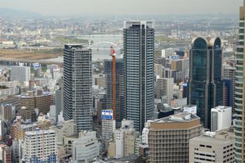 Osakanakatsu181251