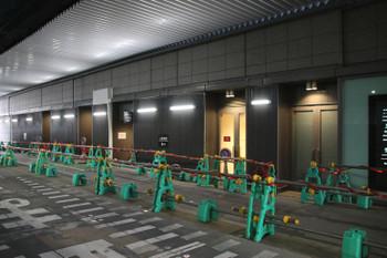 Osakadaimaru190220