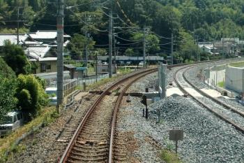 Kyotonara190984